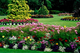 Flower Beds Landscaping